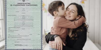 Зачем нужно свидетельство об усыновлении ребенка и как быстро его получить