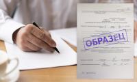 Как правильно оформить приказ об увольнении сотрудника