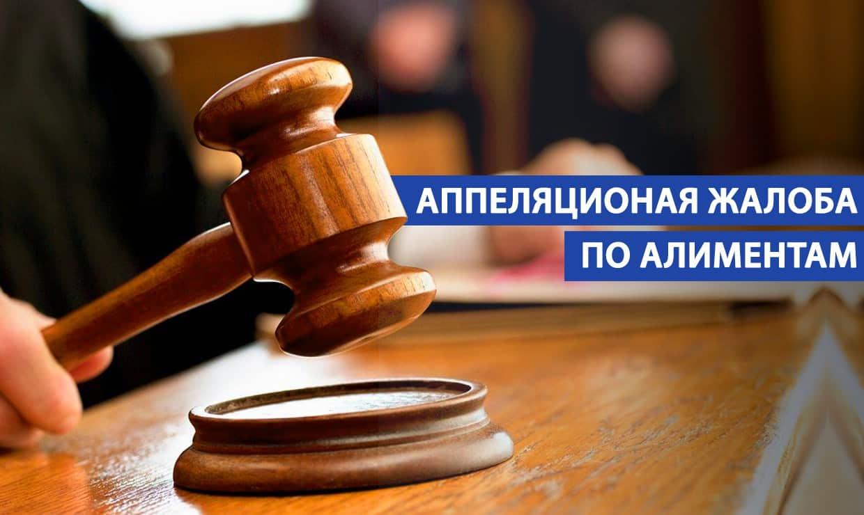 Подача апелляционной жалобы на решение суда по алиментам