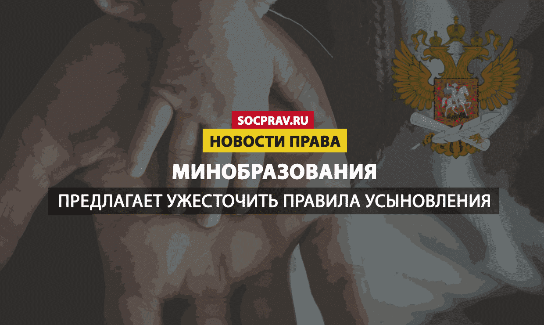 В России могут ужесточить правила усыновления