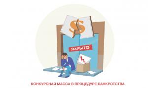 Формирование конкурсной массы в процедуре банкротства