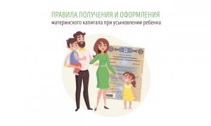Правила получения и оформления материнского капитала при усыновлении ребенка