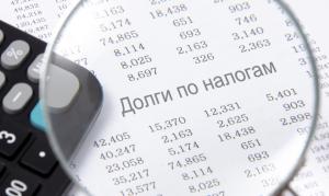 Банкротство при налоговой задолженности