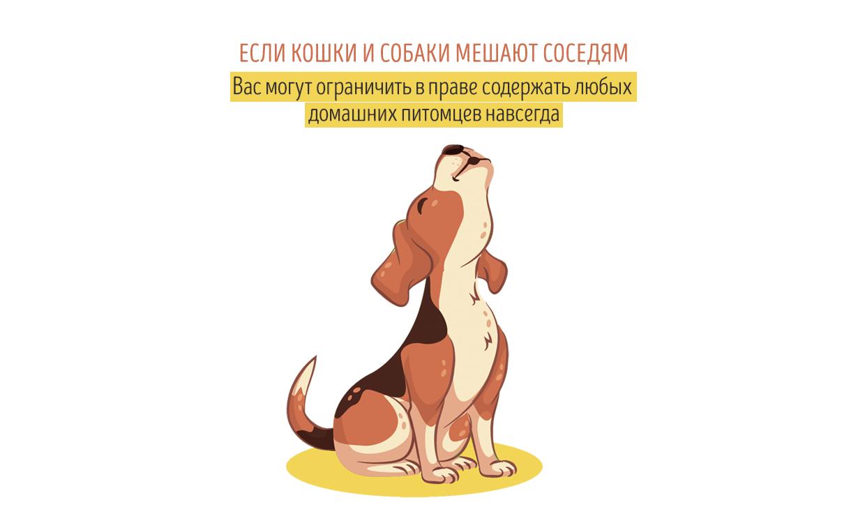 Если кошки и собаки мешают соседям – вас могут ограничить в праве ни их содержание