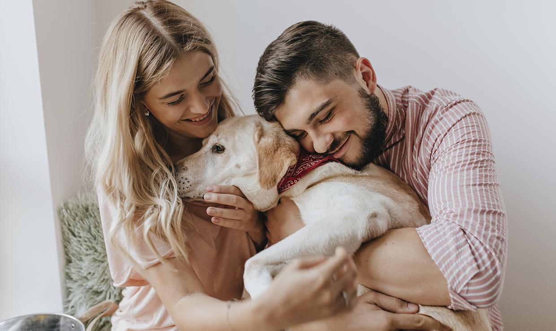 Изымать домашних животных в счет долга больше не получится